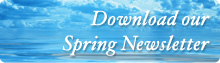 Spring-newsletter-artwork